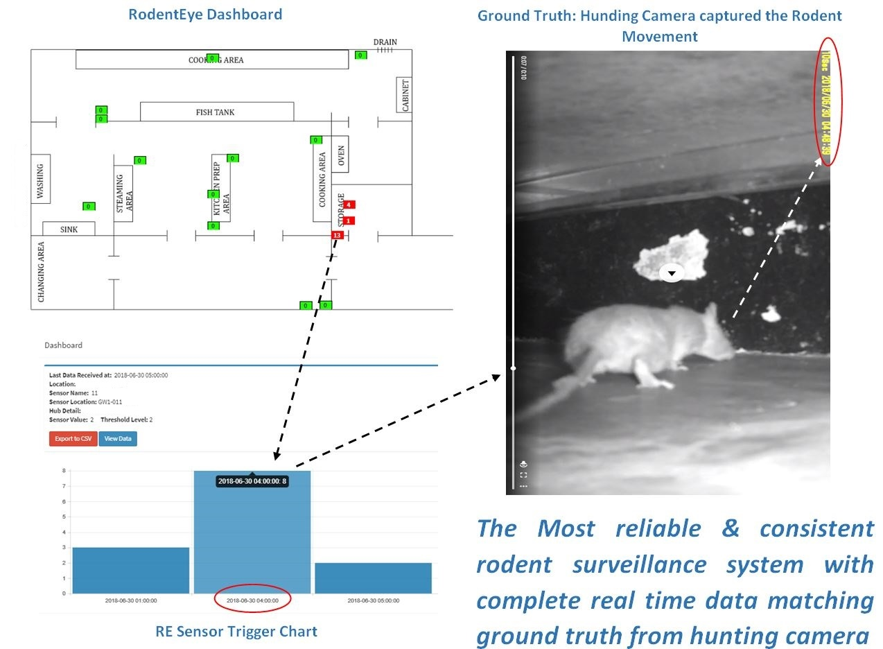 RodentEye sensor detection accuracy for Ground truth